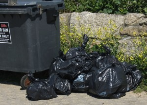 Our heap of full bags, which were collected promptly by the Council