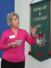 Lis Davies talks about our banners.