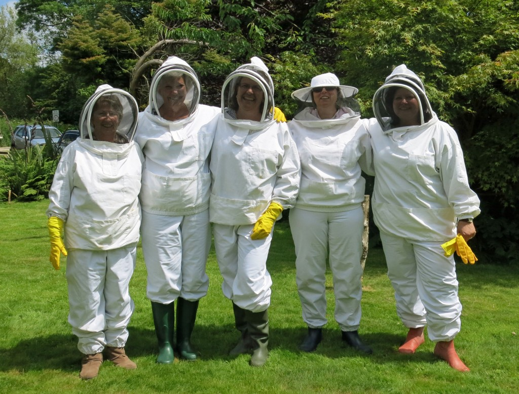 Beekeepers for a day: (left to right) Charlotte Robinson, Gail Allen, Alison Latham, Mary Venn and Helen Kestle