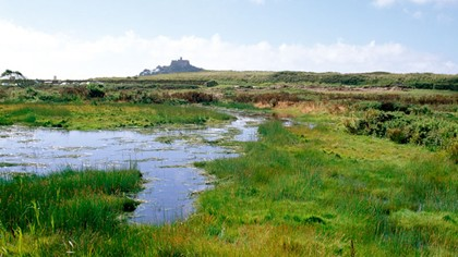 marazion marshes
